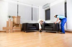 Home Removalist in Waverley